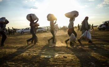 Mülteci Çalışma İzni